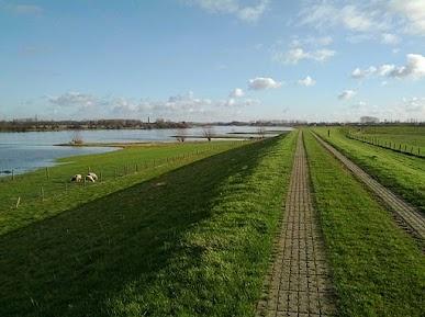 uiterwaarden van de Neder-Rijn