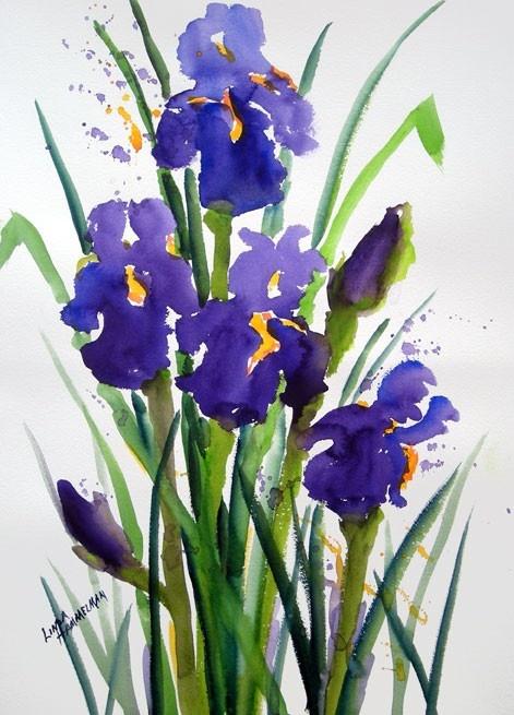 hermosos iris