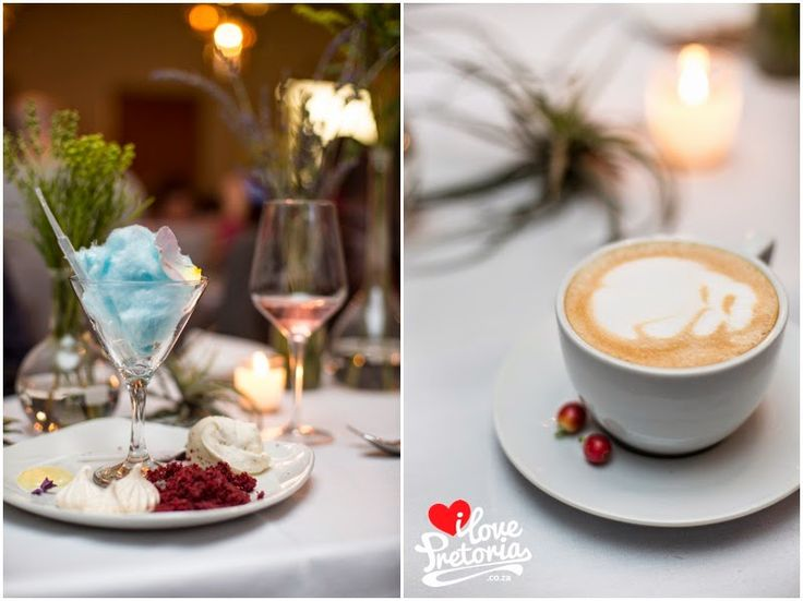 Forager launch on the I Love Pretoria blog