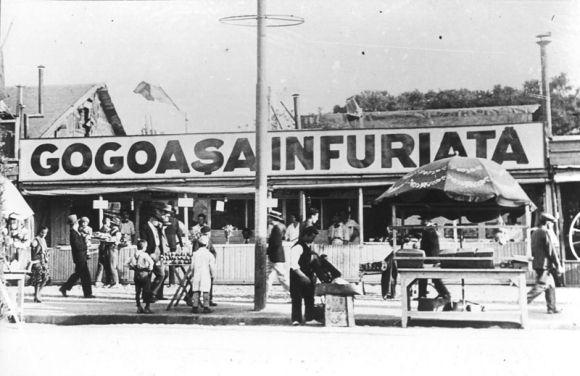 poze desktop Poze vechi, gogoasa infuriata, 1931