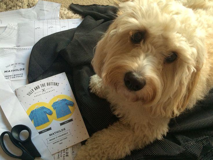 My little sewing helper