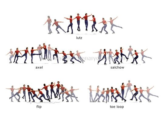 examples of jumps:  movement by which the skater leaves the ice and spins in the air before landing.