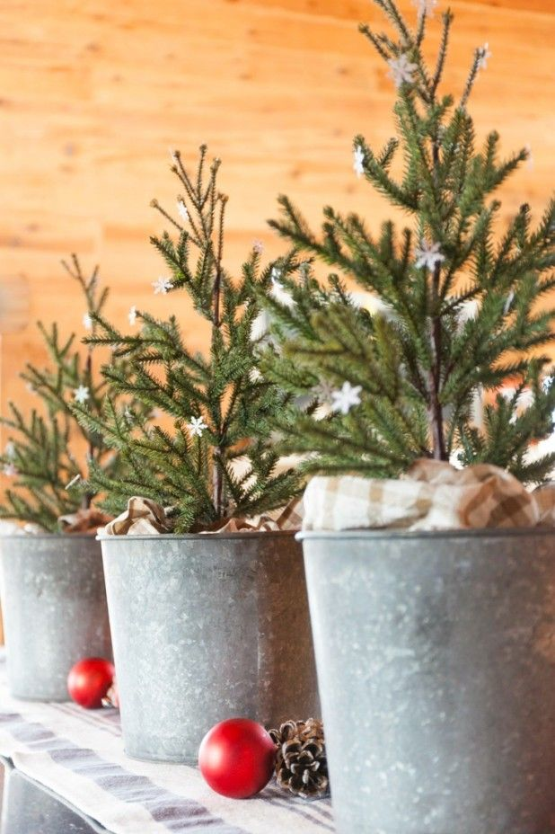 Kitchen Christmas Trees in Galvanized Buckets Dotted with Glitter Paper…