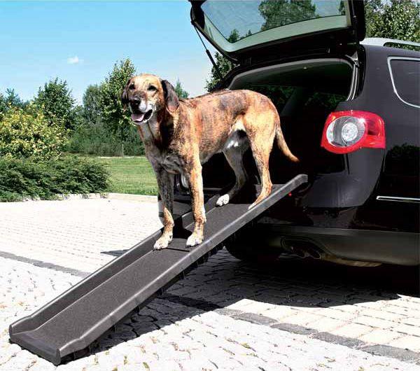 La rampe pour chien pliable de Trixie facilite l'accès à la voiture aux chiens handicapés ou victimes d'arthrite et de douleurs articulaires
