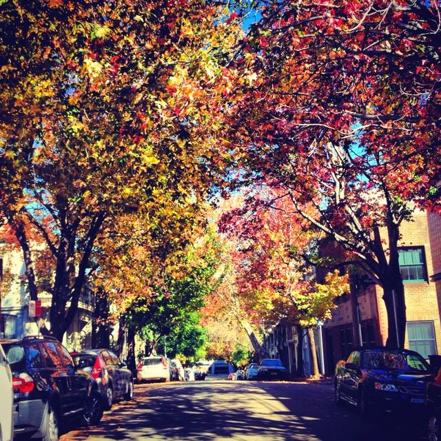I Heart autumn