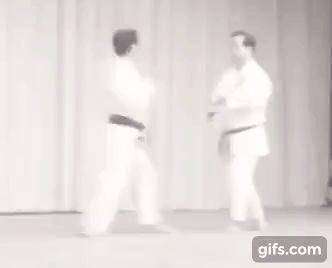 Motobu-ryu karate kumite drills - Motobu Chosei