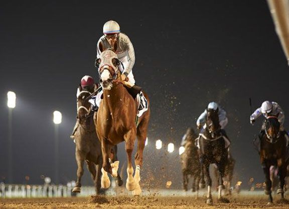 Trainer Art Sherman arrived in Dubai Monday night to oversee California Chrome (Lucky Pulpit)'s final preparations for Saturday's G1 Dubai World Cup, and the trainer was not mincing words Tuesday when speaking to the press …