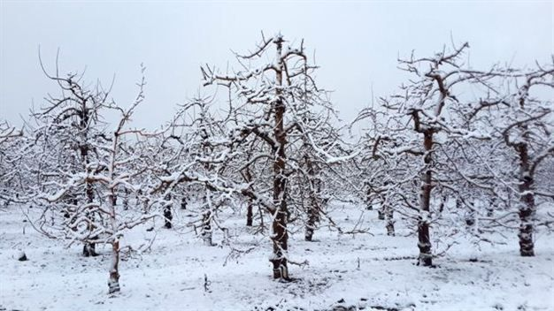 Cape Winter Storms | Prince Alfred's Hamlet, Ceres Valley Photo: News24 /Anneleigh Jacobsen