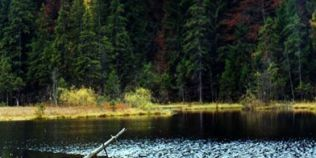 Minunea din Munţii Vrancei. Legendele Lacului Negru: de ce în apă nu trăiesc peşti, iar plantele au puteri vindecătoare