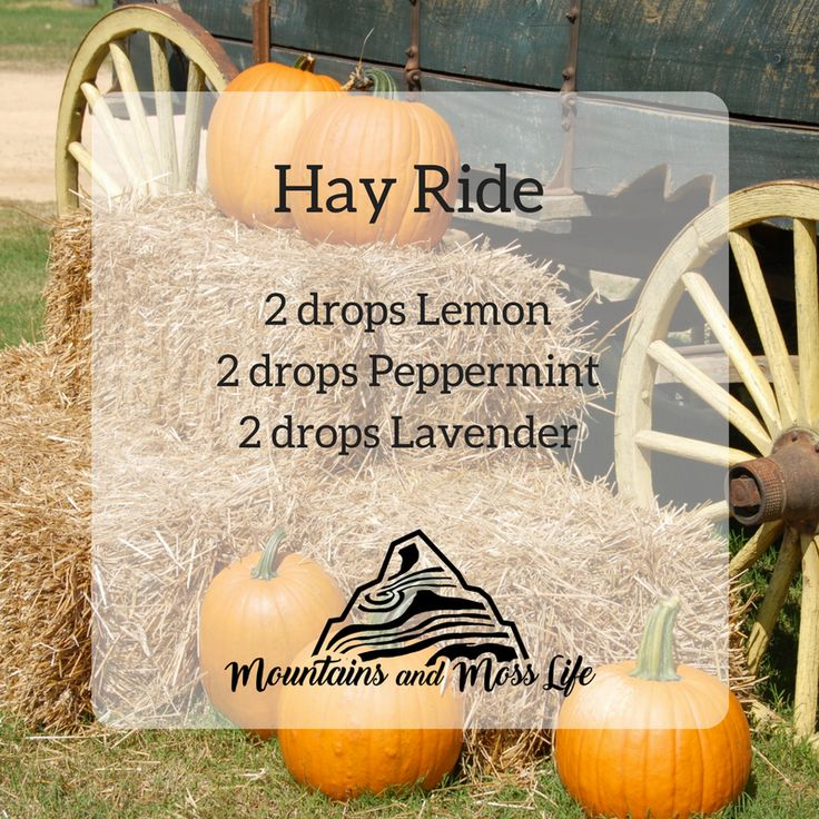 #Diffuser Blend (#Lemon, #Peppermint, #Lavender): Love #Hay Rides? Hate #allergies? Yay for this diffuser blend! This is my powerhouse for when the #sneezes and #itchiness arrive after a fun Fall Day.