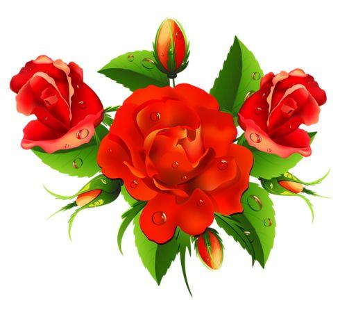 Krásne ruže. Обсуждение на LiveInternet - Российский Сервис Онлайн-Дневников