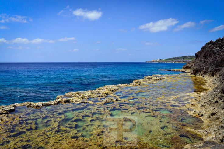 """Tim Franklin on Twitter: """"Paradise out into the depths. #timfranklinphotography #minamidaito #okinawa #retrip #packandgo… https://t.co/N8PPWc7m8q https://t.co/yrFvgZIp9M"""""""