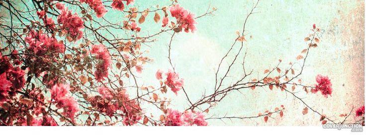 Beautiful Facebook Cover