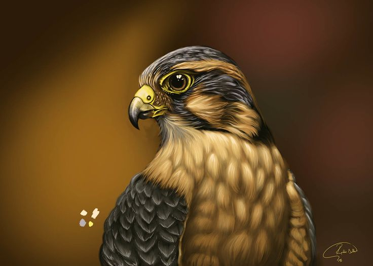 Animal Art by Robbie Allen | Creatures | 2D | CGSociety