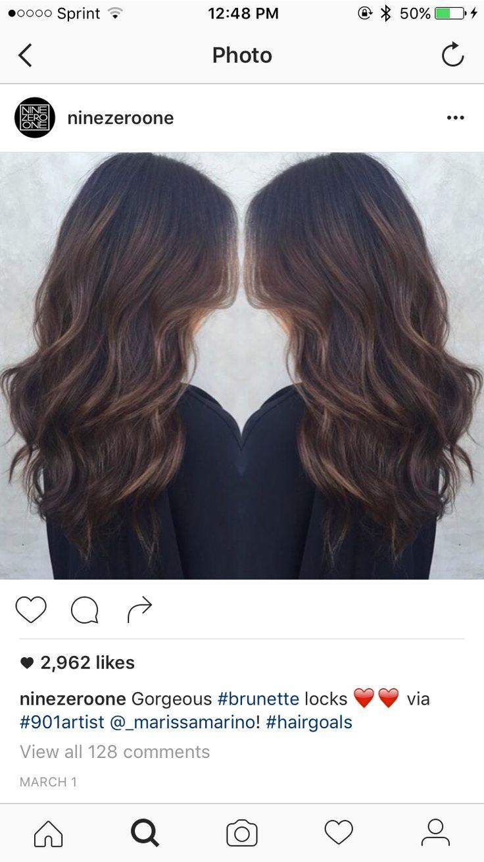 Hair Colors, Haircolor