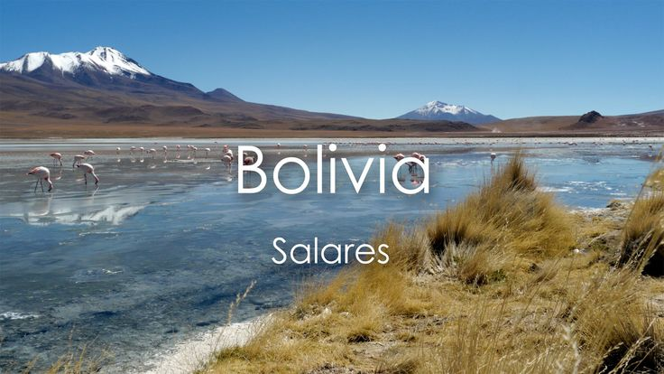 Bolivia -  Salares