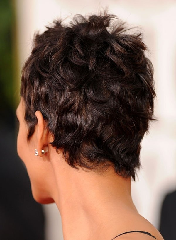 how hair style 25 best ideas about halle berry haircut on 7825