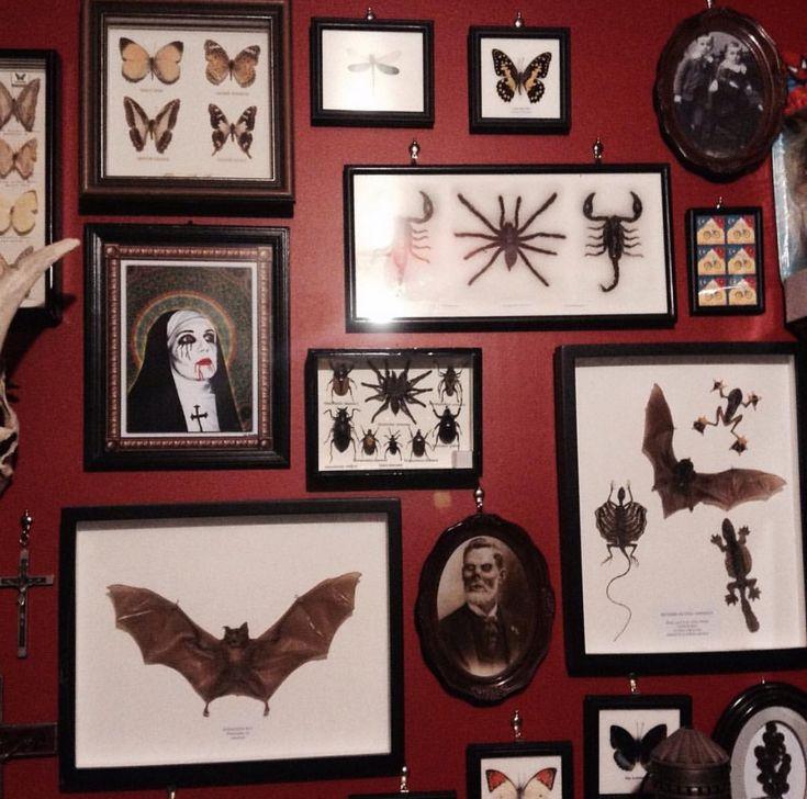 Wall of creepy curiosities as a Halloween photo backdrop.