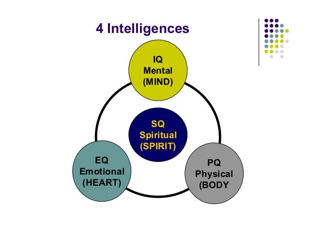 the relationship of iq eq sq More than 75% of fortune 500 companies rely on our emotional intelligence (eq) tests, training, and certification enjoy free articles, books, and information.
