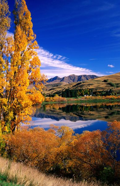 'Lake Hayes near Arrowtown.',New Zealand by Lonely Planet