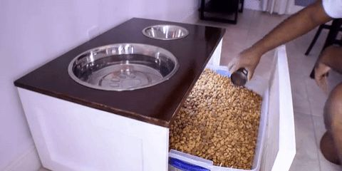 Doggie bowl station with food storage underneath!