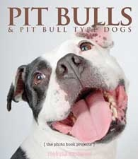 Pit Bulls & Pit Bull Type Dogs, By Melissa McDaniel. An effort to dispel negative Pit Bull labels.