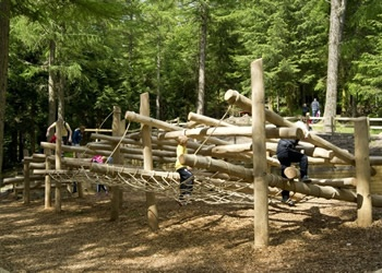 Wildplay for the kids up at Whinlatter