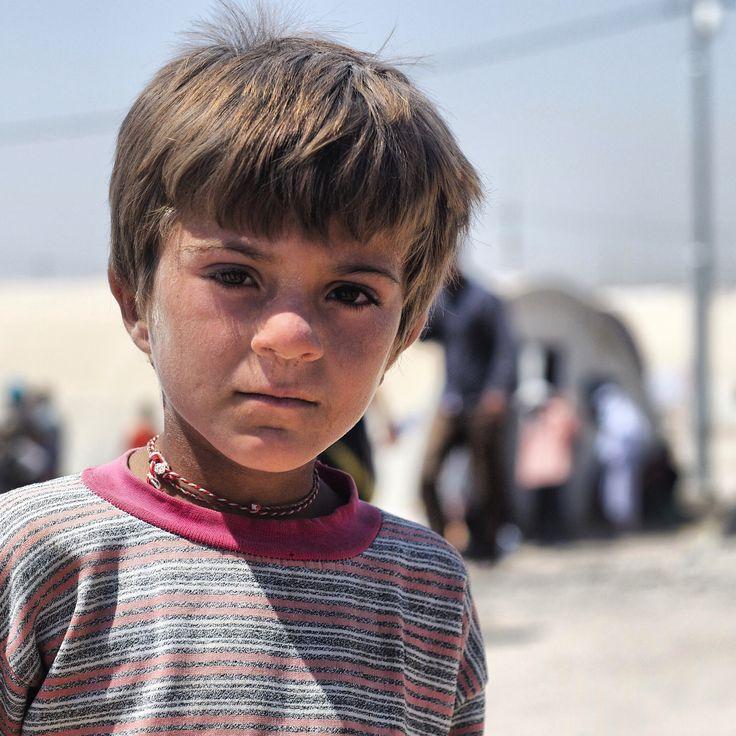Iraqi awarness