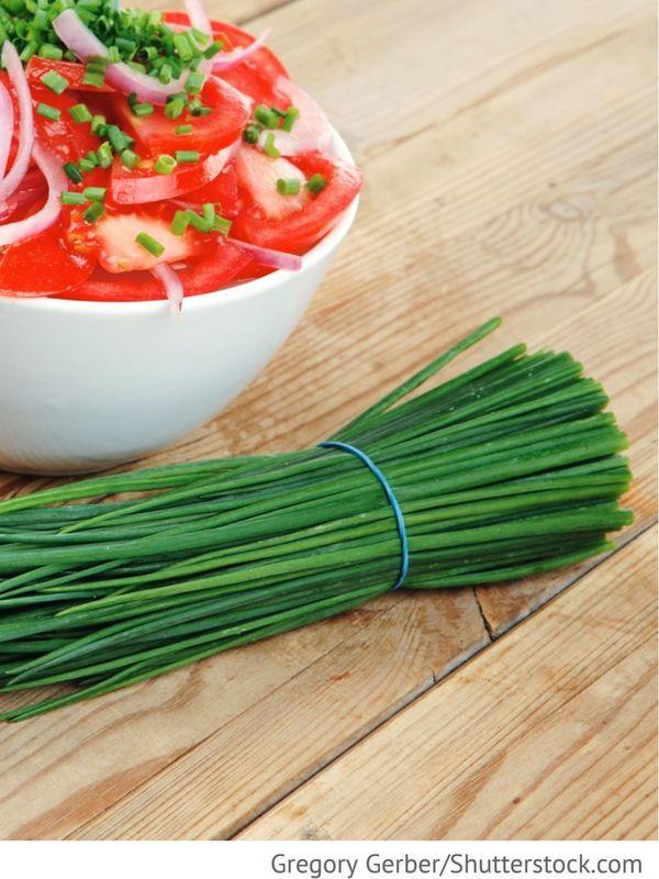 Tomatensalat mit Zwiebeln Salat is pomidorow s lukom - Салат из помидоров с луком - Russische Rezepte