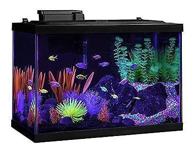 Best 25 20 gallon aquarium ideas on pinterest small for 20 gallon fish tank hood