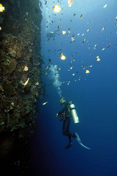 Bunaken, Sulawesi Utara | Objek wisata yang menyuguhkan keindahan bawah laut dengan beraneka warna yang dimilikinya