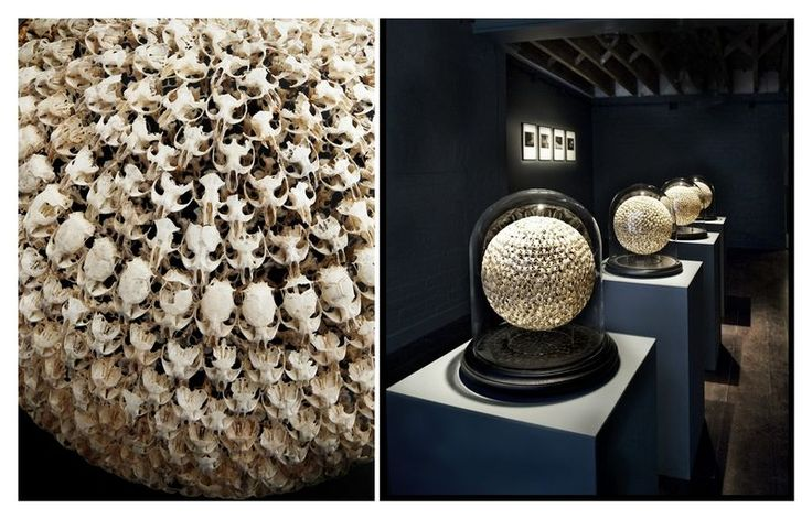 British sculptor Alastair Mackie - spheres made from hundreds of tiny mouse skulls