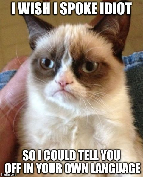 I wish I spoke idiot funny memes meme lol funny quotes grumpy cat humor idiot