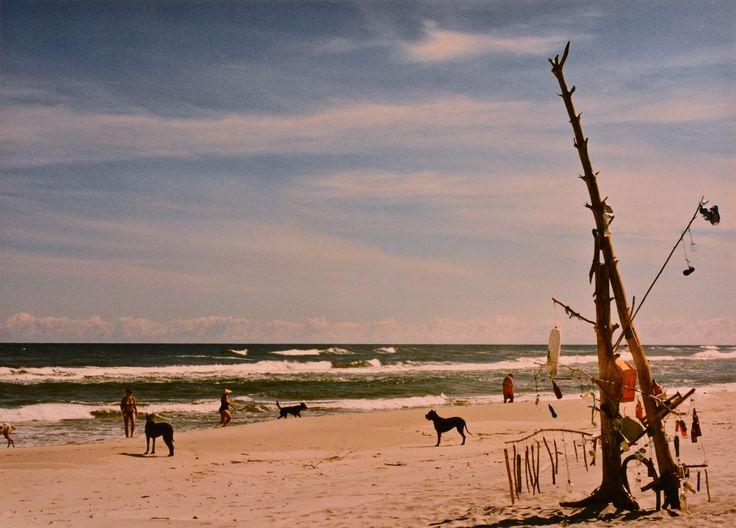 "Yury Ermolenko, ""TOWER OF BABEL"" (Land art project ""Baltic - Hel""), 2003, Hel Peninsula, Baltic Sea, Poland #YuryErmolenko #юрийермоленко #ЮрийЕрмоленко #yuryermolenko #юрiйєрмоленко #ЮрiйЄрмоленко #юрийермоленкохудожник #landart #balticsea #sea #sky #amazing #RapanStudio #photo #photography #metaphysics #metaphysical #philosophy #installation #лэндарт #инсталляция #art #contemporaryart #modernart #magic #texture #лэндарт #poland #hel #helpeninsula #artproject #искусство #creative"
