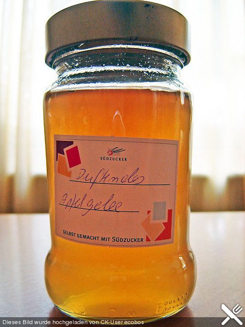 Duftendes Apfelgelee  900 mlApfelsaft, klarer 1 Pck.Gelierzucker, extra (500 g) 2 ELThymian, frisch oder getrocknet 1 Pck.Zitronensäure