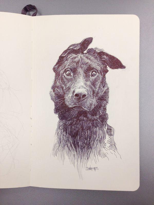 Dog on Behance by Dan Mora