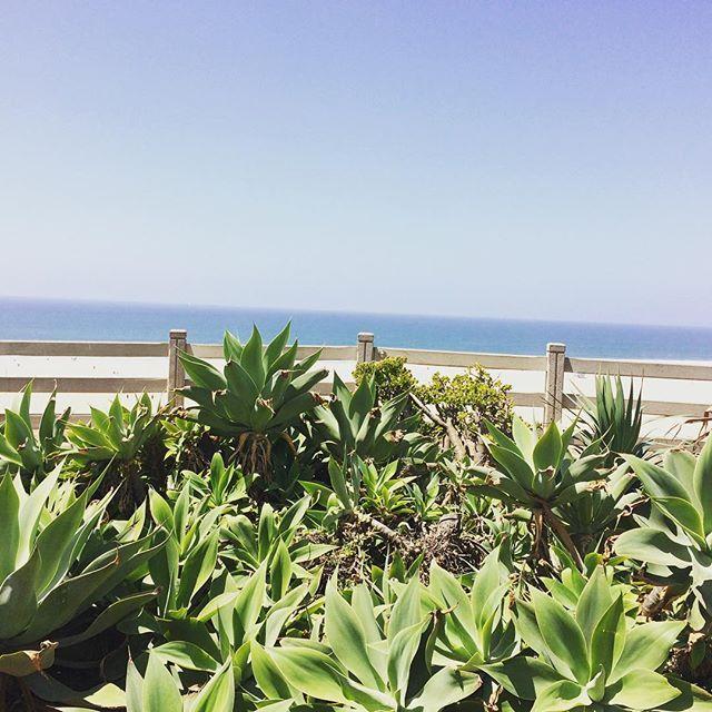 No words needed  #losangeles #writing #bookstagram #books #sea #beach #goodtimes #timeout #iloveit