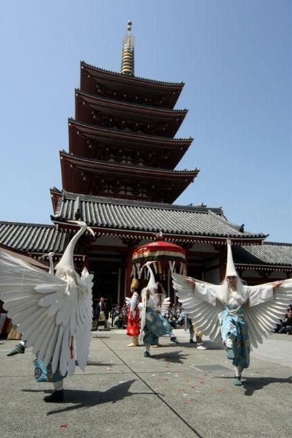 Senso-ji Temple White heron Festival / 浅草寺 白鷺の舞