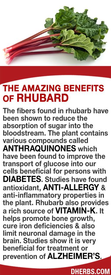 The fibers found in rhubarb have been shown to reduce the absorption of sugar into the bloodstream. The plant contains anthraquinones which improve the transport of glucose into our cells beneficial for persons with Diabetes. Studies have found antioxidant, anti-allergy & anti-inflammatory properties in the plant. Rhubarb is rich in Vitamin-K which helps promote bone growth, cure iron deficiencies & limit neuronal damage in the brain. Studies show it is very beneficial for Alzheimer's…