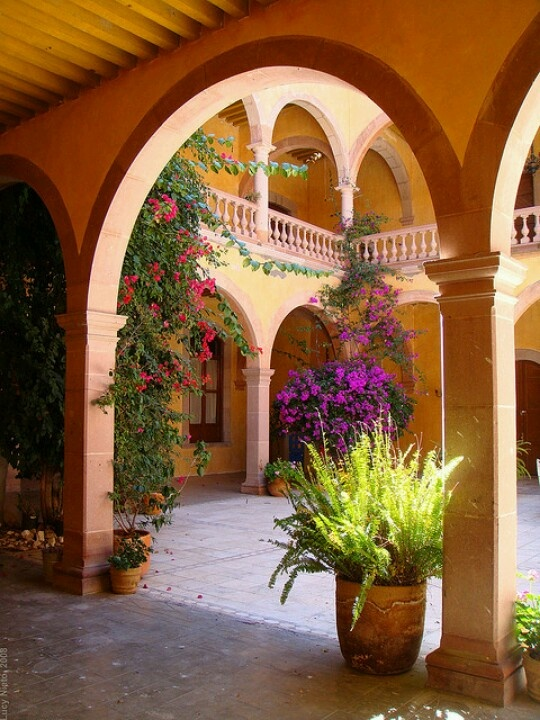 Patio...large planters...contrasting colors.