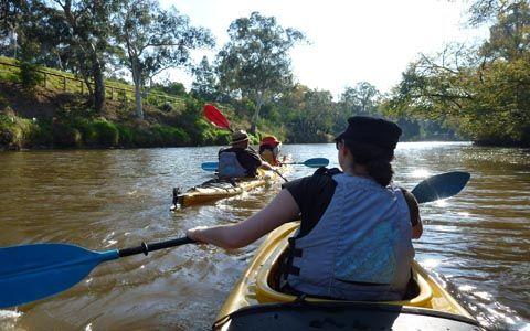 Kayak Hire Abbortsford