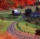 Countryfarm Lifestyles  ~  Great info for farming, self sufficiency,country living, etc.