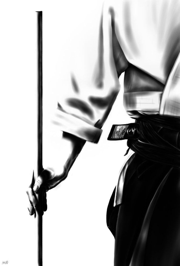 Aikido_by_Kaloong7.jpg 735×1,087 pixels - Darks and lights