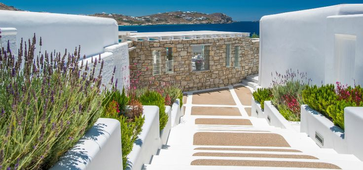 Stay in touch and get updated! Read all the latest articles in our blog, and you will be amused, as well as informed about everything regarding your stay in #DelightBoutiqueHotel in #Mykonos !  #Greece  #Greekislands #Summer2017 #VisitGreece