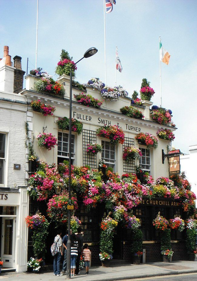 Isn't The Churchill Arms just bloomin' lovely? Located in Kensington it's the perfect spot for summer ciders. www.churchillarmskensington.co.uk