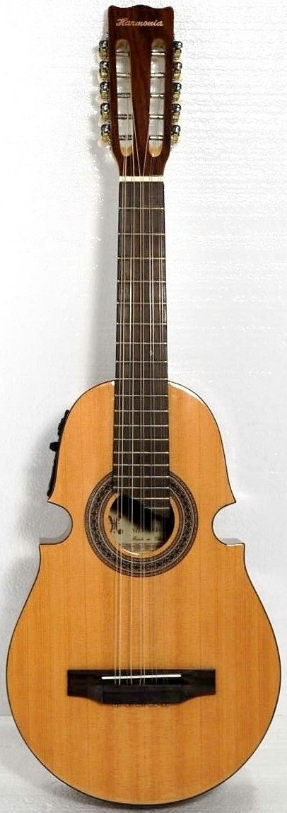 Stringed instrument