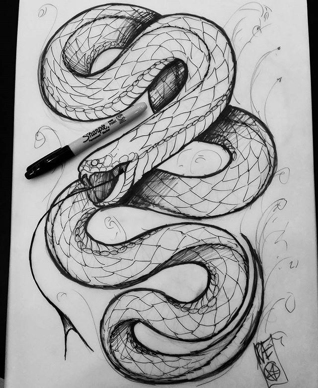 The 25+ best Snake sketch ideas on Pinterest | Snake ...