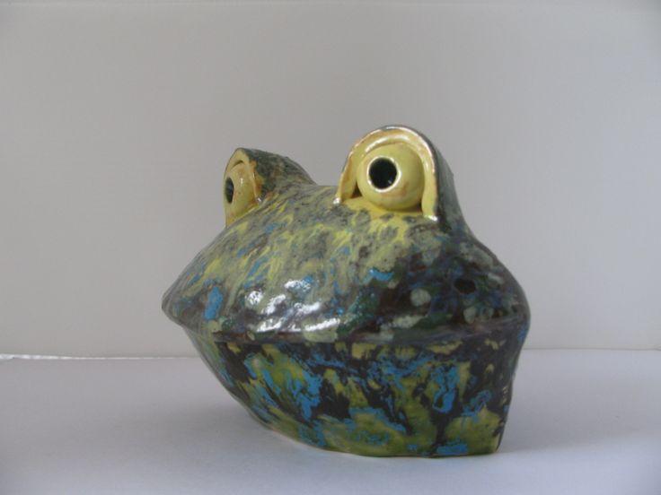Лягушка с желтыми глазами: