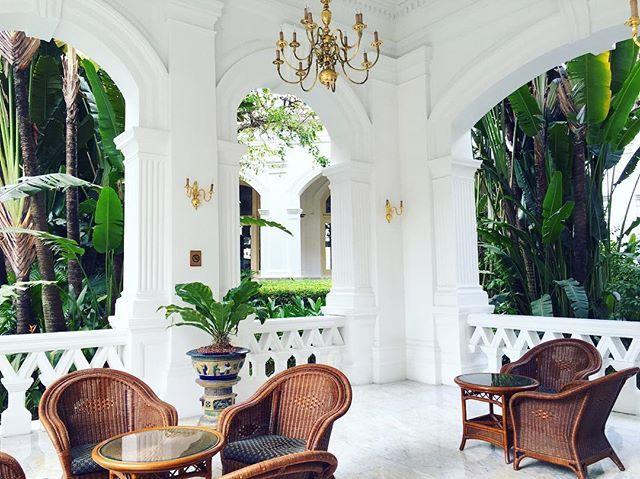 Such a beautiful hotel #neverwanttoleave #singaporedays #palmtreeseverywhere #suchastunner #grandoldlady #colonialstyle #colonial #colonialarchitecture #raffleshotel #raffles #raffleshotelsingapore #iconichotel @raffleshotelsingapore @raffleshotels