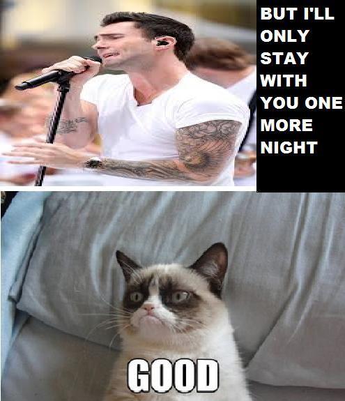 Grumpy Cat Good Night Meme | www.pixshark.com - Images ...